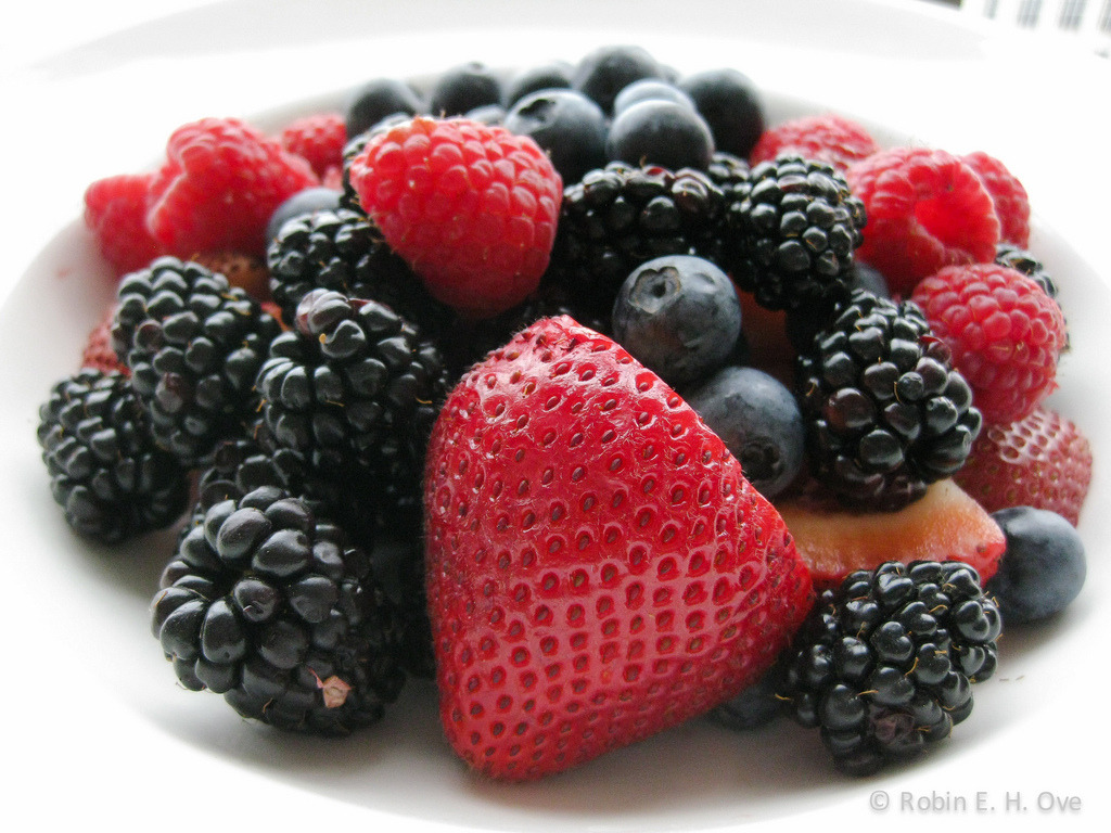 Berries! (by Robin E. H. Ove)