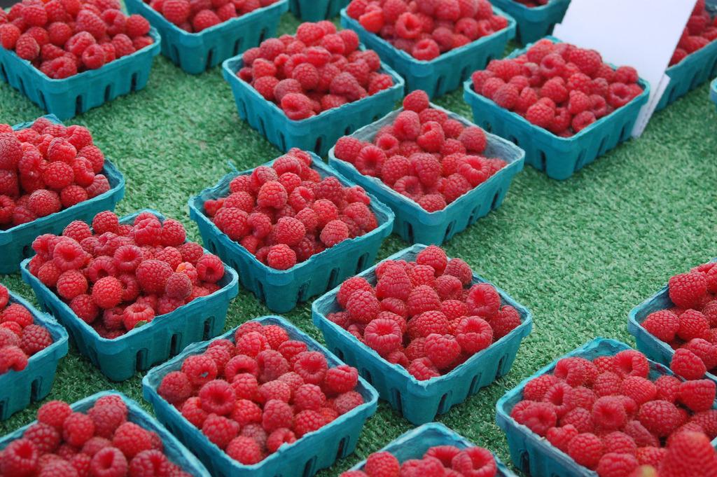 Raspberries (by earthdog)